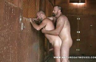Dlakavi mišićavi medvjed u staji