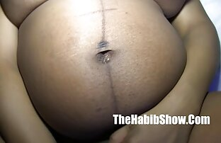 Maca koja jede trudnu mačju orašastu spermu